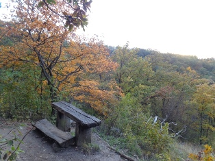 Herbstzeit ist Toplistenzeit